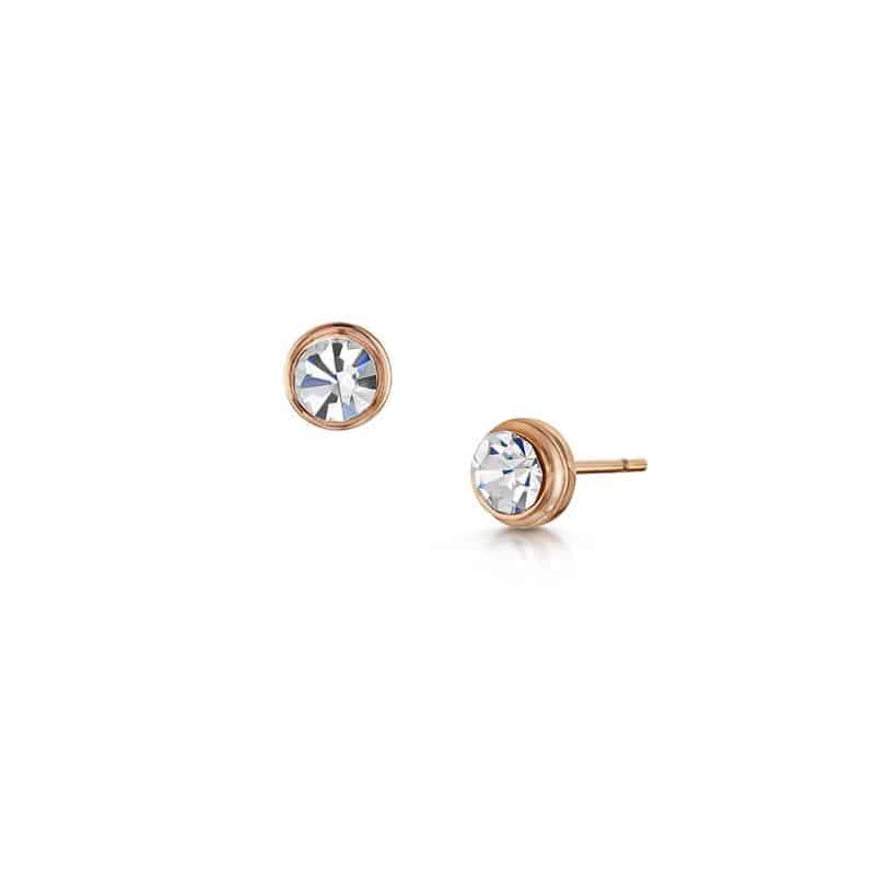 Stud Rose Gold Earrings 15 00